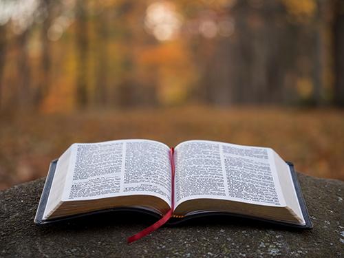 Weekly Word of Encouragement: 05/13